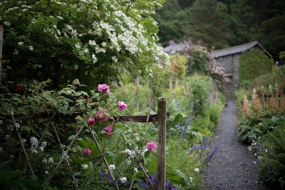 Snel en makkelijk onderhoud van struiken en bloemperken